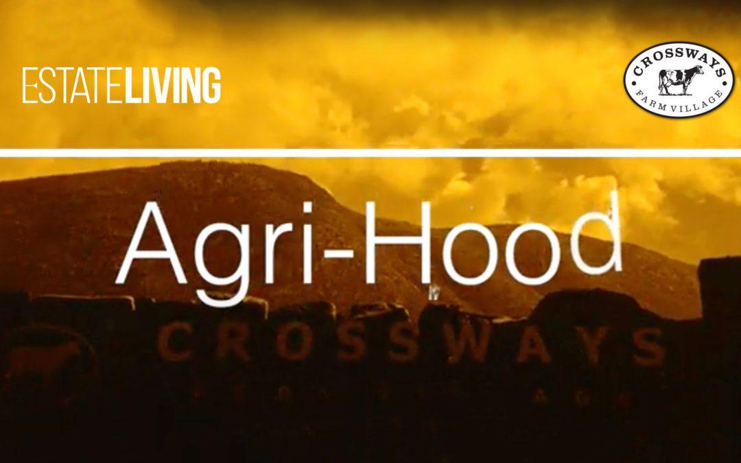 South Africa's first AgriHood Webinar